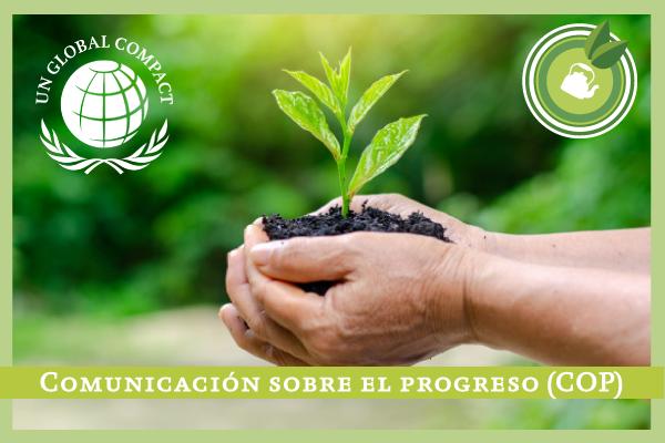 Comunicación sobre el progreso