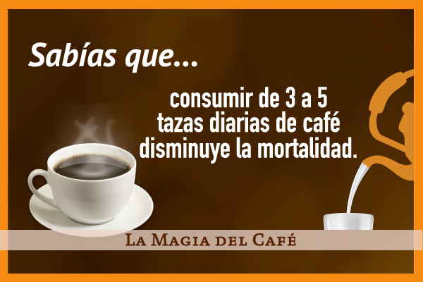 La magia del café